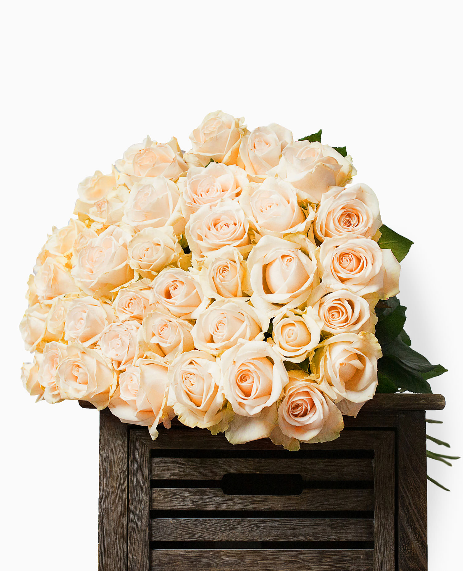 Růže krémové - rozvoz, dárek